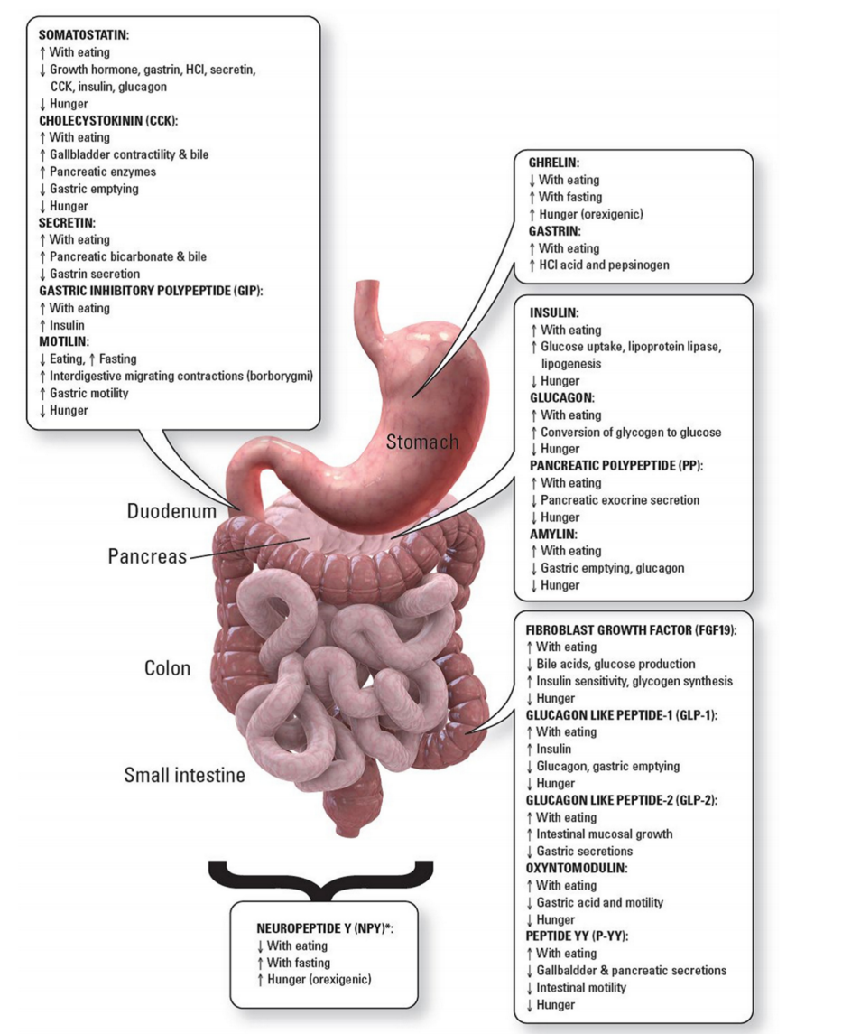 Lipids and bariatric procedures Part 2 of 2: scientific statement ...